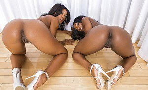 Full-figured ebony babes in bikinis stripping and having some pussy lick fun