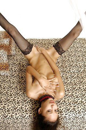 Slim asian doxy taking off her panties and spreading her nylon clad legs