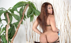 Beauty chick ebony with tiny boobies shows off her big black ass