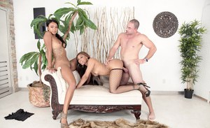 Jayla Foxx and Harley Dean are sharing this white dude's dick