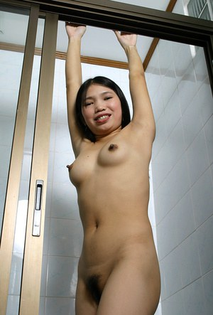 Amateur Asian Diep took off her night gown and exposed her hairy pussy