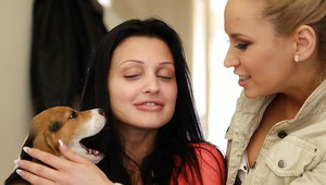 Hot pornstar babes with Aletta Ocean get naked to have sex