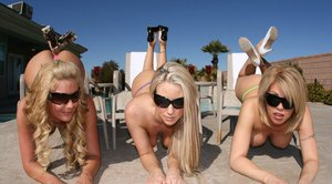 Hot pornstars Phoenix Marie, Carolyn Reese and Brooke Haven pose naked