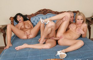 Ravishing big busted gals are into groupsex with a lucky guy