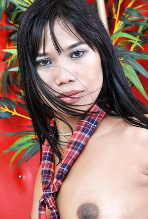 Sensual Asian brunette Anne shows off her cute tiny boobies!