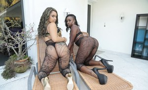 Black dykes Naomi Gamble and Vixen Vanity in wild 69 sex action